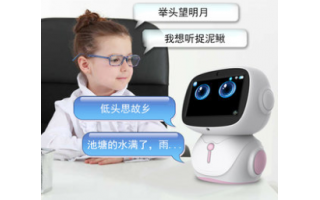 Intelligent voice education robot