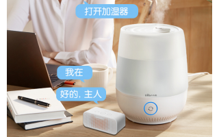 Intelligent voice humidifier